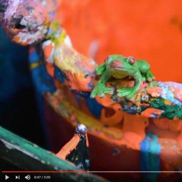 advent-froglet